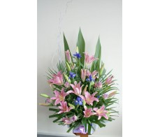 Frontal Pastel Arrangement