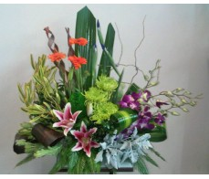 Funky Modern Bright Pot Arrangement