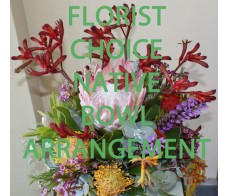 Florist Choice Native Bowl Arrangement