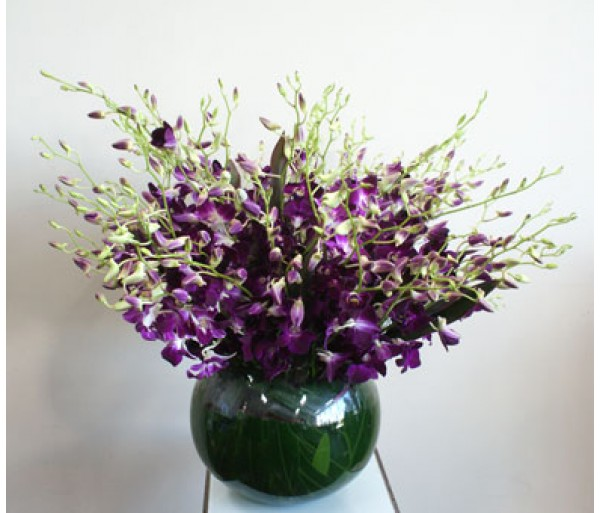 singapore orchid fishbowl display rh businesswithblooms com au