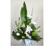 Green and White Frontal Pot Display