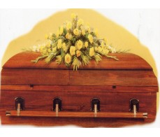 Lemon Casket cover