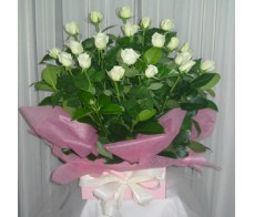 24 White Roses - Box Arrangement